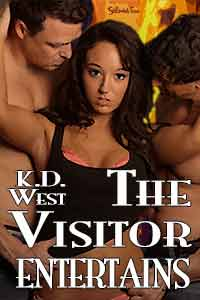 Visitor-5-cover-200
