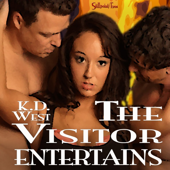 The Visitor Entertains audiobook cover