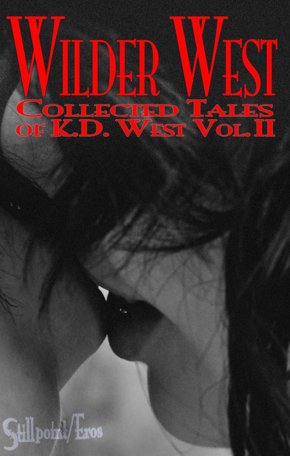 WIlder West cover