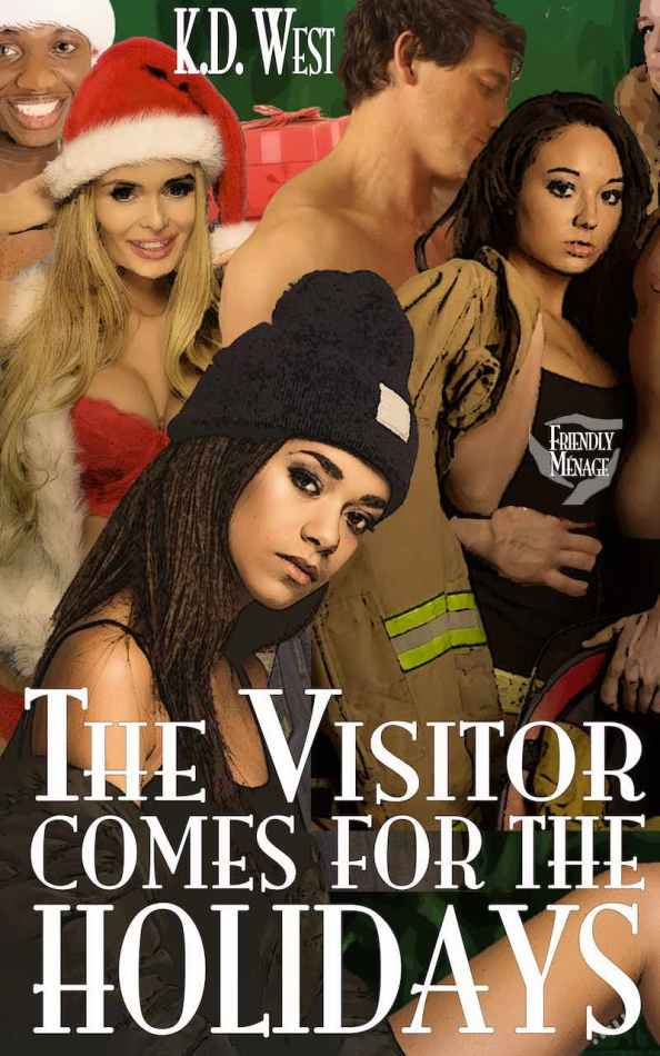 New release: The Visitor Comes for the Holidays (interracial reverse harem)
